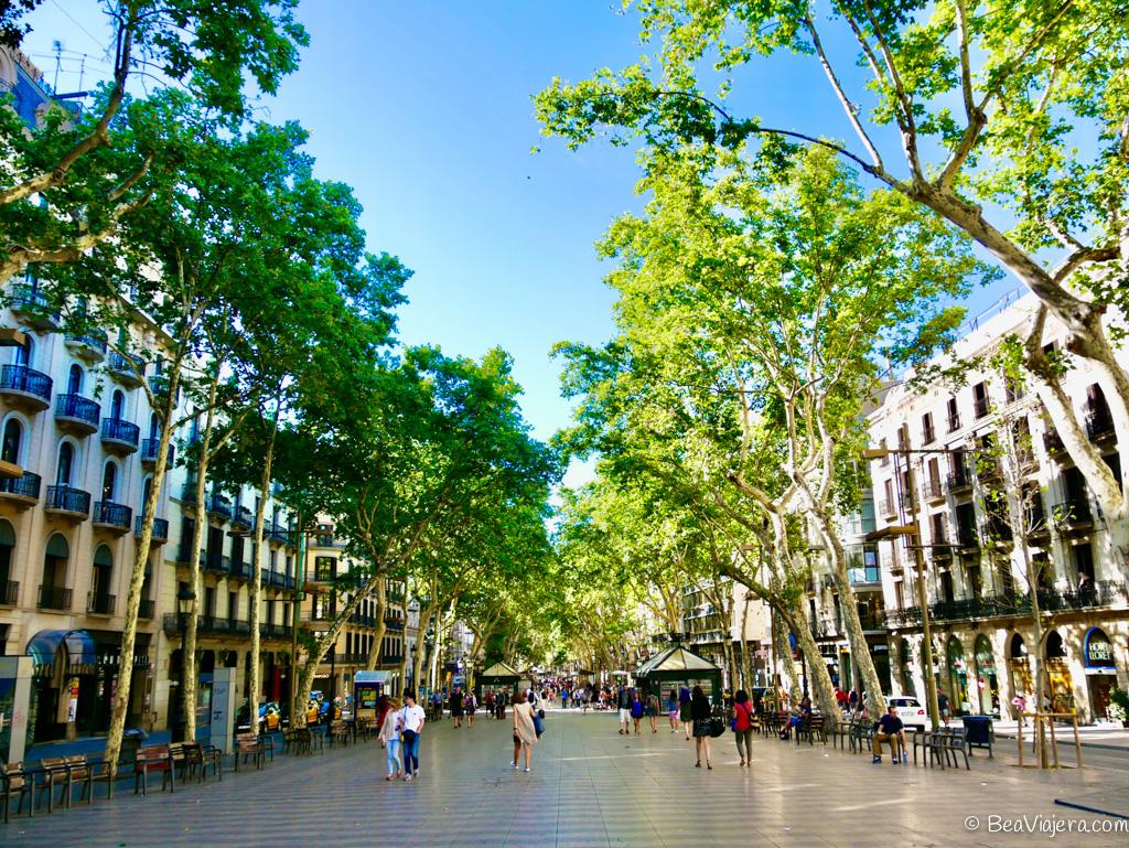 20 cosas que hacer en Las Ramblas de Barcelona