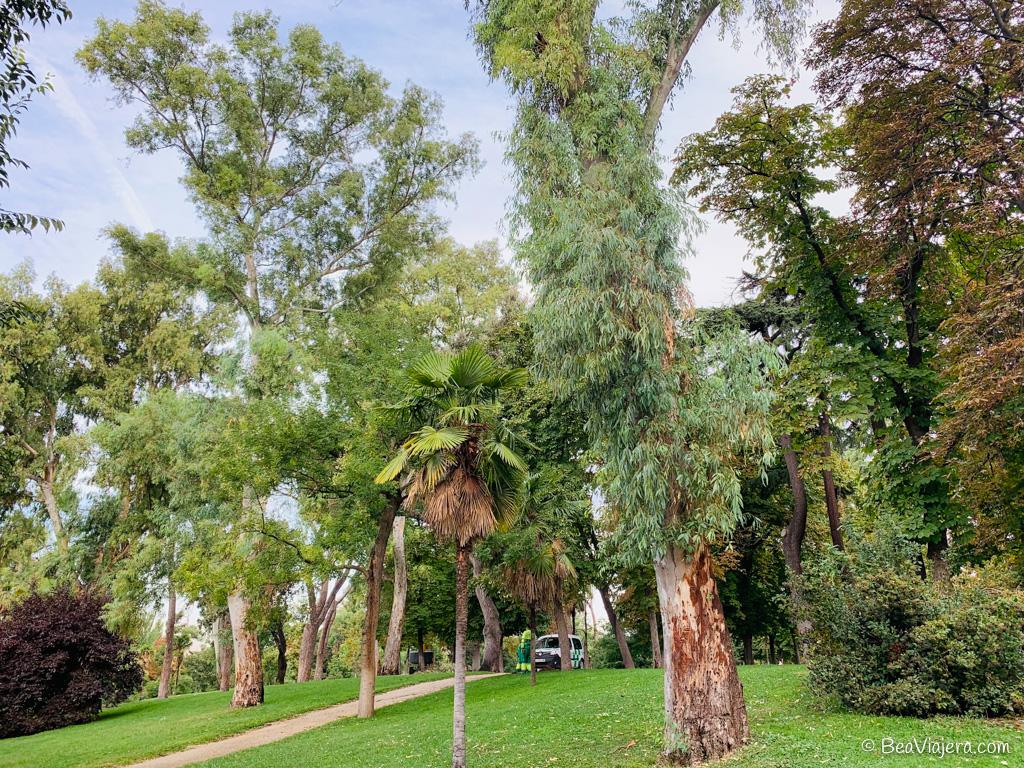 Un paseo por el Parque del Retiro en Madrid